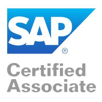 Sample resume sap delivery manager
